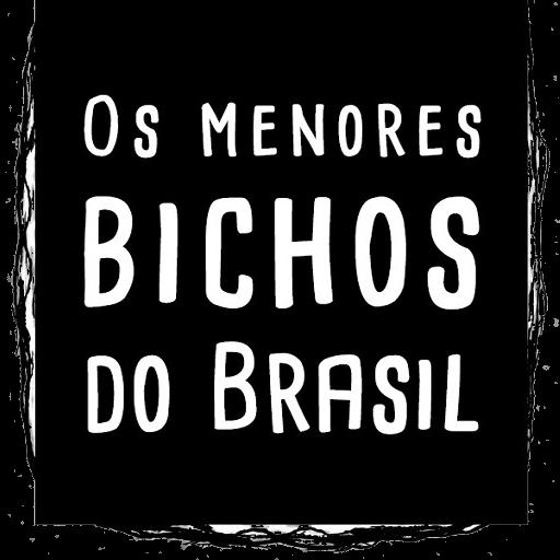 Os menores bichos do Brasil